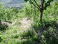 Na Prevlju - panoramio.jpg