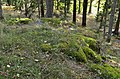 Nacka 114-1 September 2012 02.jpg