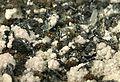 Nagyagite-Quartz-Rhodochrosite-rar09-wp01c.jpg