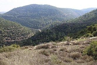 Nahal Sorek - Image: Nahal Sorek