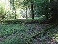 Nationaler Biodiversitäts-Hotspot 9 Nördliche Frankenalb.jpg