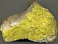 Native sulfur on siliceous sinter (Quaternary; Steamboat Springs, Nevada, USA) 3.jpg