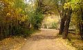Nature of Jowestan Village.jpg