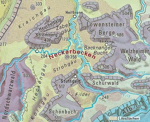 Neckarbecken