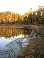 Nelly's Moss north lake, Cragside - geograph.org.uk - 304616.jpg