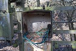 Nest (104899114).jpg
