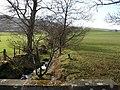 Nether Glinns Farmland - geograph.org.uk - 341444.jpg