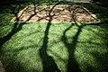 New Mos Eisley - panoramio (42).jpg
