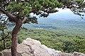 Nice view - panoramio (5).jpg