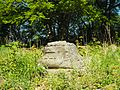 Niedersachsen, Goslar, LSG GS 00001, Ruinen auf dem Petersberg einschließlich Klusfelsen, Säulenrest.JPG