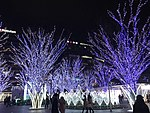 Night view in front of Hakata Station 20171230.jpg