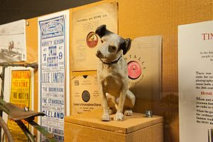 Kingston Museum - Nipper