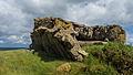Normandy '12 - Day 4- Stp126 Blankenese, Neville sur Mer (7466768532).jpg