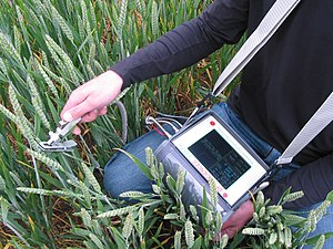 Fluorometer - Fluorometer designed to measure chlorophyll fluorescence in plants