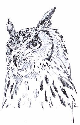 uilen orde wikipedia