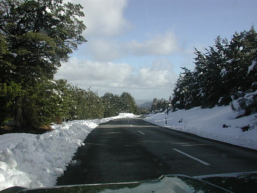 Ohakune Mountain Road, Mount Ruapehu, through snow-covered bush