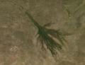 OkavangoDelta.png