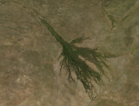 Image illustrative de l'article Delta de l'Okavango