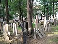 Old Jewish Cemetery, Prague 002.jpg