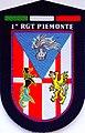 Omerale tuta OP del Reggimento CC Piemonte.JPG