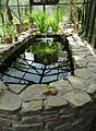 Outdoor heated fish tank enclosed by glass plus reflections.jpg