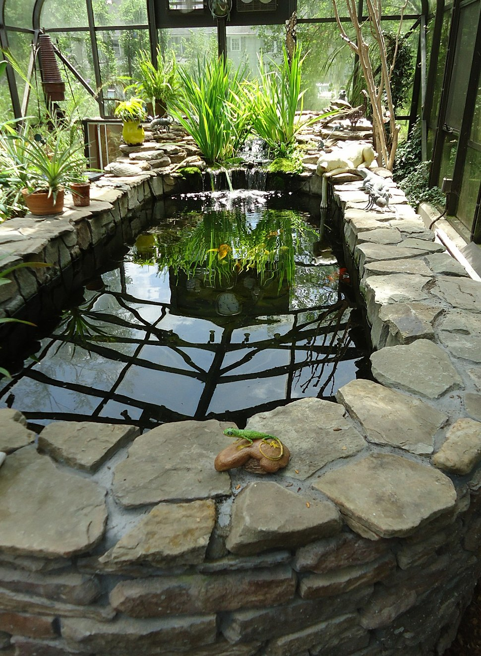 Outdoor heated fish tank enclosed by glass plus reflections