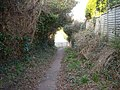 Overgrown Footpath, Bexhill-on-Sea - geograph.org.uk - 690409.jpg
