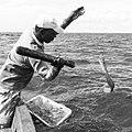 Pêche à la Murèe, Pêche traditionnelle à Palmeira, île de Sal, Cap-Vert.jpg