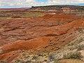 Painted Desert Arizona4.jpg