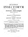 Pallas Icones Insectorum.png