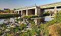 Parc fluvial de Sant Boi de Llobregat - 51091420144.jpg