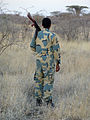 Parc national d'Awash-Ethiopie-Scout.jpg