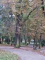 Park Miejski w Kielcach (67) (jw14).JPG
