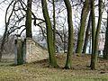Park pałacowy Wiśniowa 2013 11.JPG