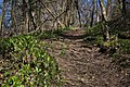 Park prirode Papuk (Phantography) 34.jpg
