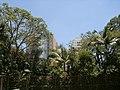 Parque Guarapiranga - Av. Guarapiranga 505 - Em frente aos Condomínios Viva Guarapiranga Park e Mérito Guarapiranga - panoramio.jpg
