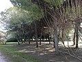 Parque Infanta Elena (Sevilla) 25.jpg