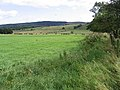 Pasture field - geograph.org.uk - 542515.jpg