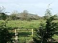 Pasture land off Bradley Road, Warminster - geograph.org.uk - 1061929.jpg