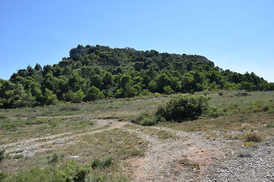 Pech Redon, Massif de la Clape, south of France