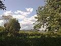 Peisaj din Pirgaresti - panoramio - Soci.jpg