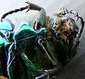 Pest Control - Dead Bug (5000576346).jpg
