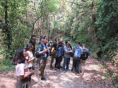 Photowalk and Bird Watching at Shivapuri National Park - Pani Muhan & Jama Chowk Area (5).jpg
