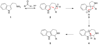 Pictet–Spengler reaction - The mechanism of the Pictet-Spengler reaction