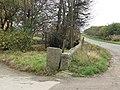 Pictish Symbol Stone at Drimmies - geograph.org.uk - 613448.jpg
