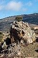 Piedra del Tormo, Fombuena, Zaragoza, España, 2017-01-04, DD 54.jpg