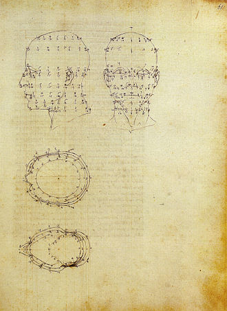 De Prospectiva pingendi - Perspective of anatomy from De Prospectiva Pingendi.