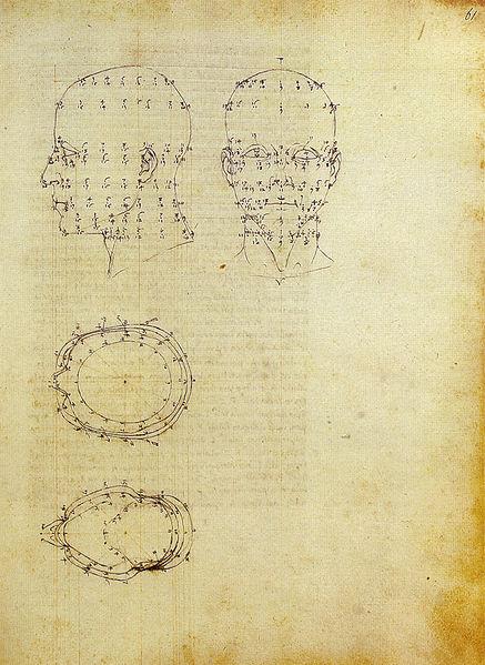 File:Piero, proiezioni di una testa scorciata dal de prospectiva pingendi, ante 1482, milano, biblioteca ambrosiana.jpg
