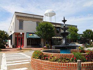 """Pine Mountain, Harris County, Georgia - """"Gateway to Callaway Gardens"""""""