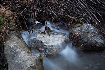 Pipe through beaver dam.jpg
